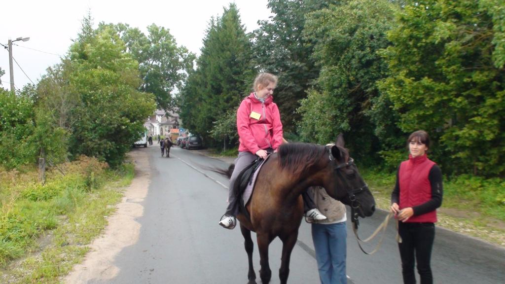 природная терапия. лошадки