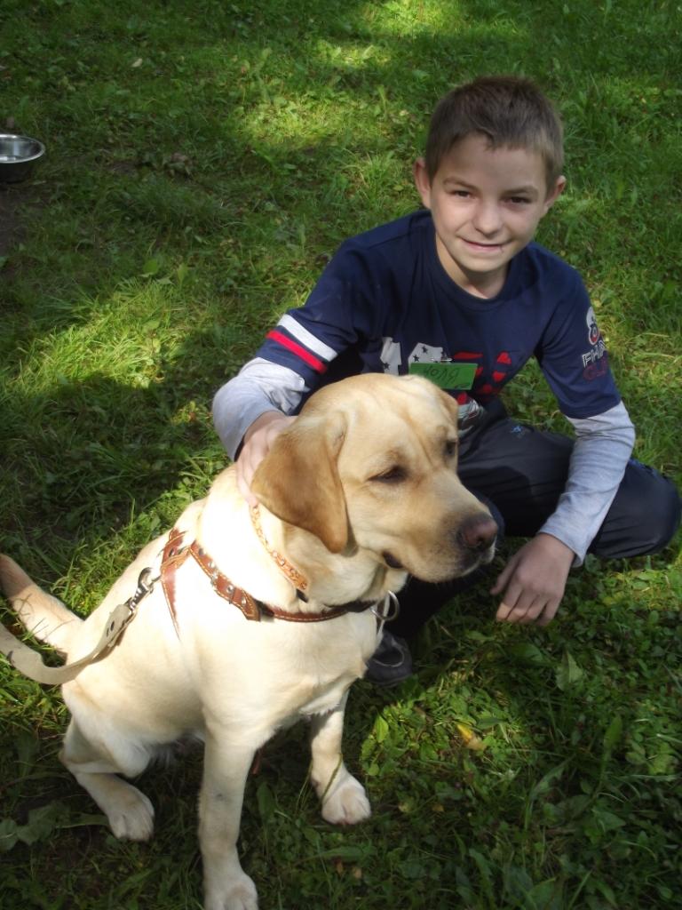 природная терапия. собаки 5