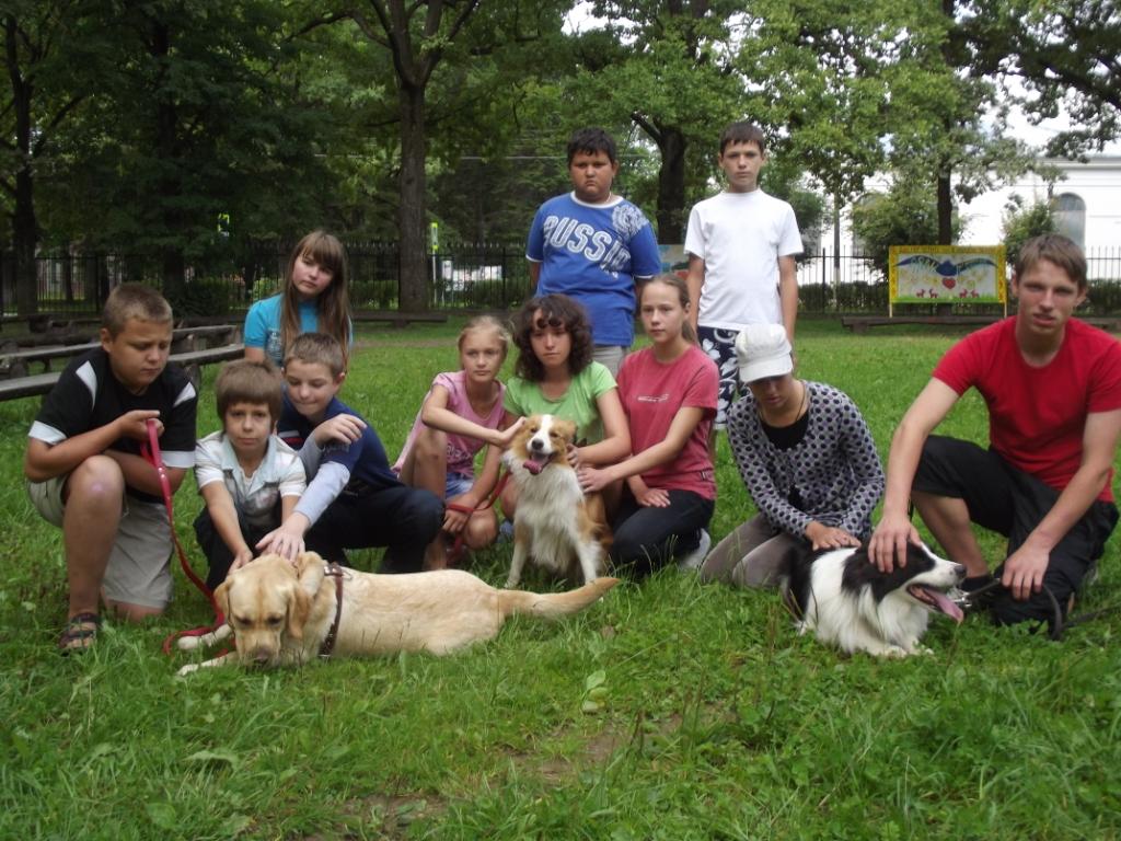 природная терапия. собаки 6