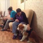 Собаки в СПП3